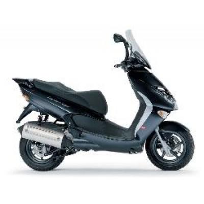 LEONARDO 300 2004-2007