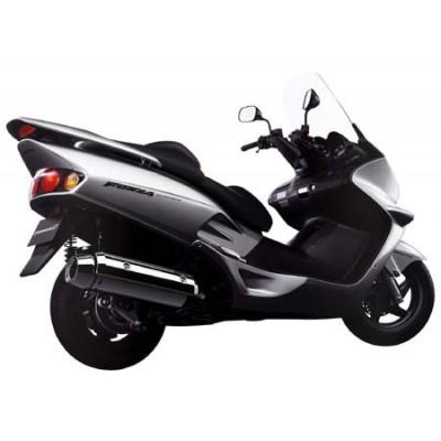 FORZA 250 2000-2004