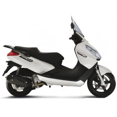 X7 EVO 300ie 2010-2012
